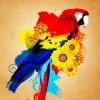 Beautiful Parrot Photo Manipulation in Gimp