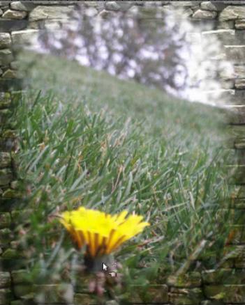 Frame a Photo With GIMP